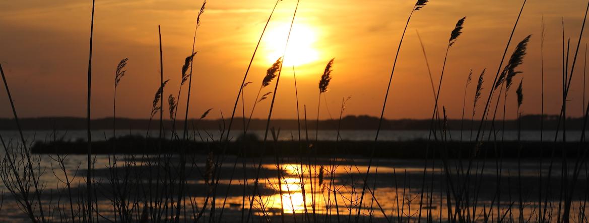 Ocean City Maryland Beach Sunset